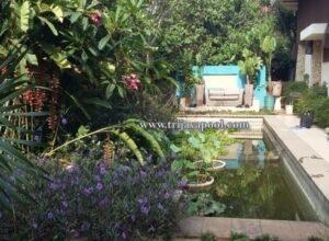 kolam renang richard