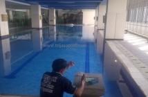 kolam renang pelita harapan