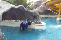 Jasa Pembuatan kolam renang Jakarta